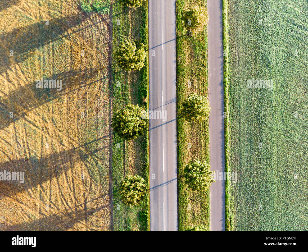 Countryside avenue seen from drone with picturesque shadows - Stock Image