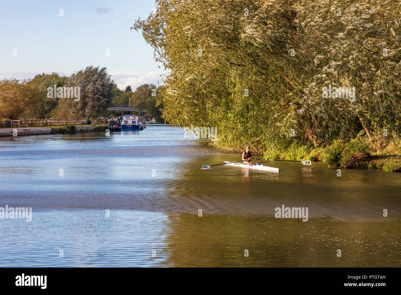 A woman rower stops under the Willow trees near Iffley lock and rests before returning to Oxford, Iffley, Oxfordsire, UK - Stock Image