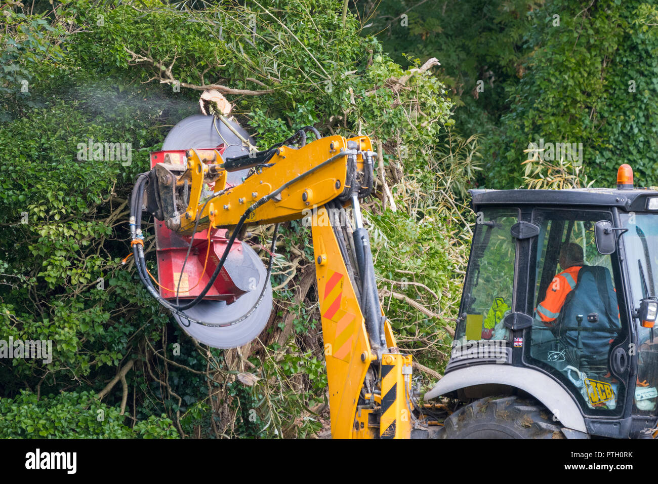 Protech PB2000 (Powerblade 2000) double rotating saw fitted to a tractor, cutting trees in woodland in Autum in the UK. - Stock Image