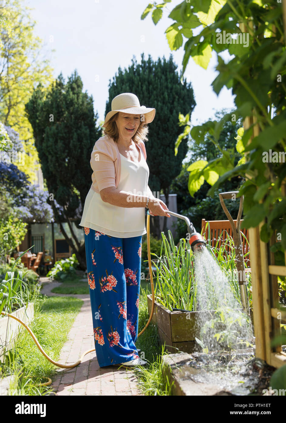 Active senior woman gardening, watering plants - Stock Image