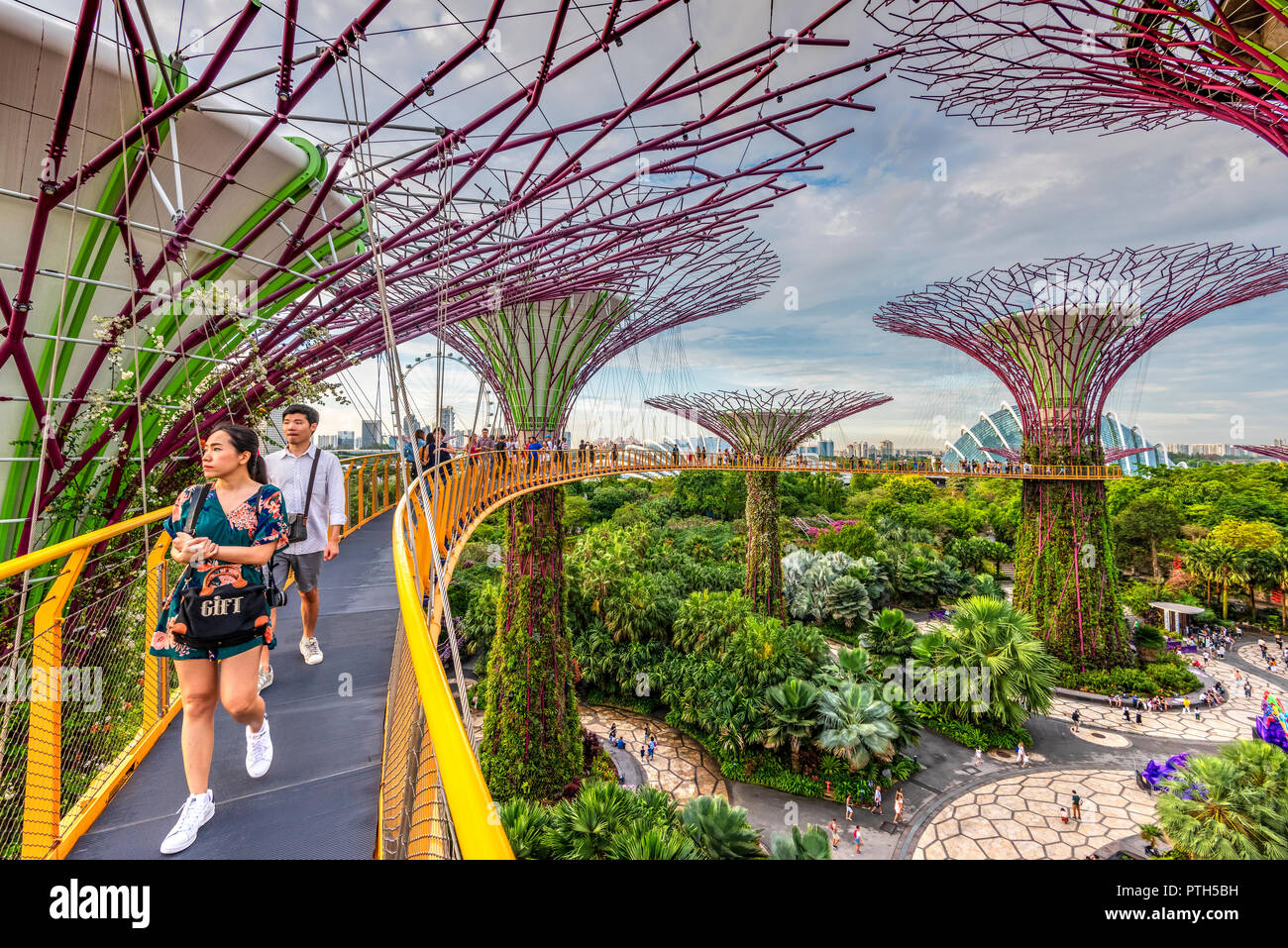 The Supertree Grove at Gardens by the Bay nature park, Singapore - Stock Image