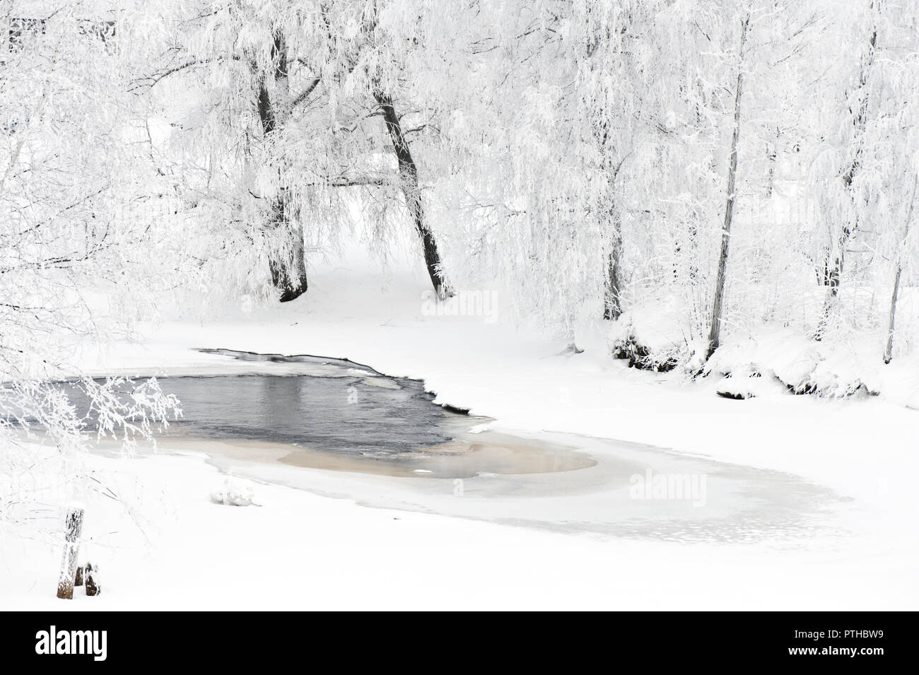Winter river scenery with frost covered trees on riverbank. - Stock Image
