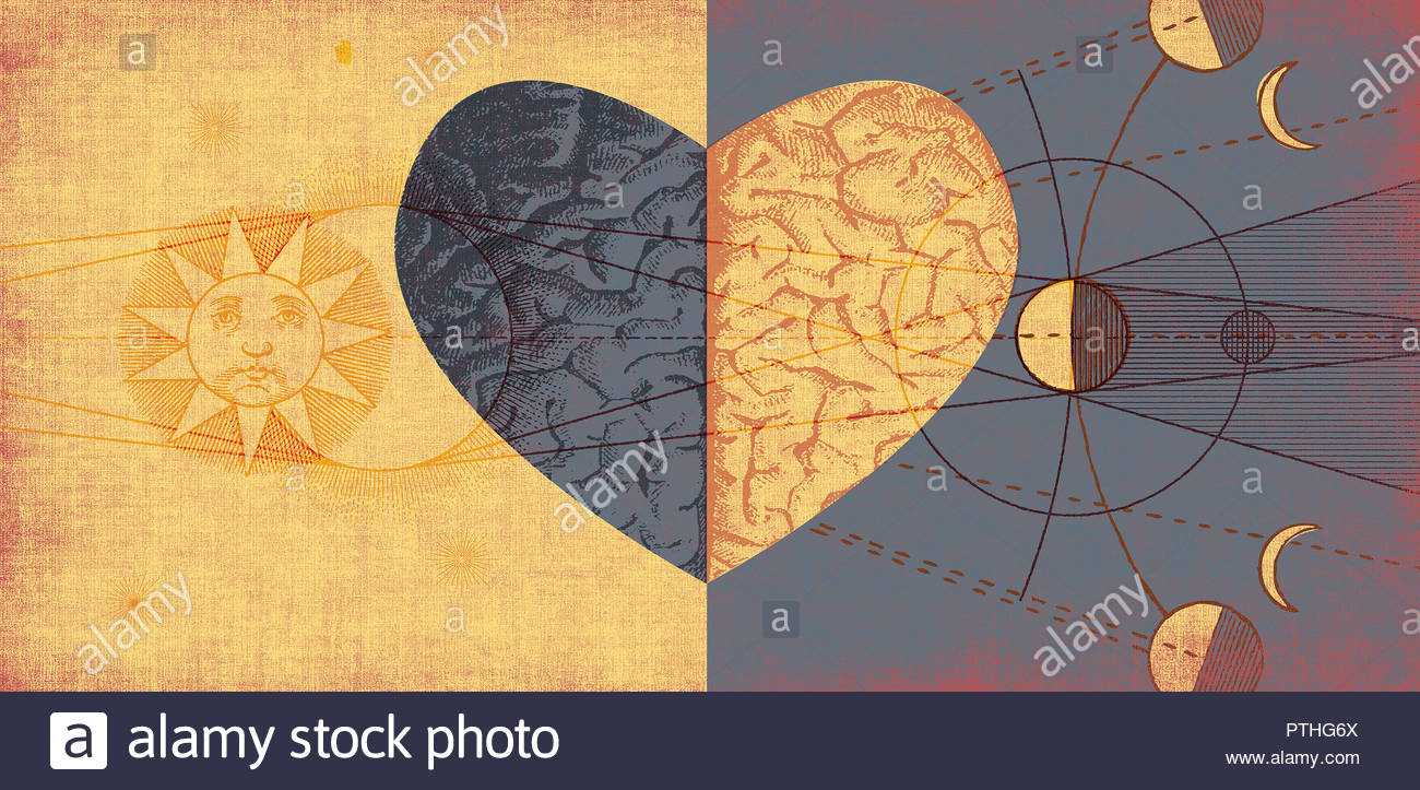 Contrast between the head and the heart - Stock Image