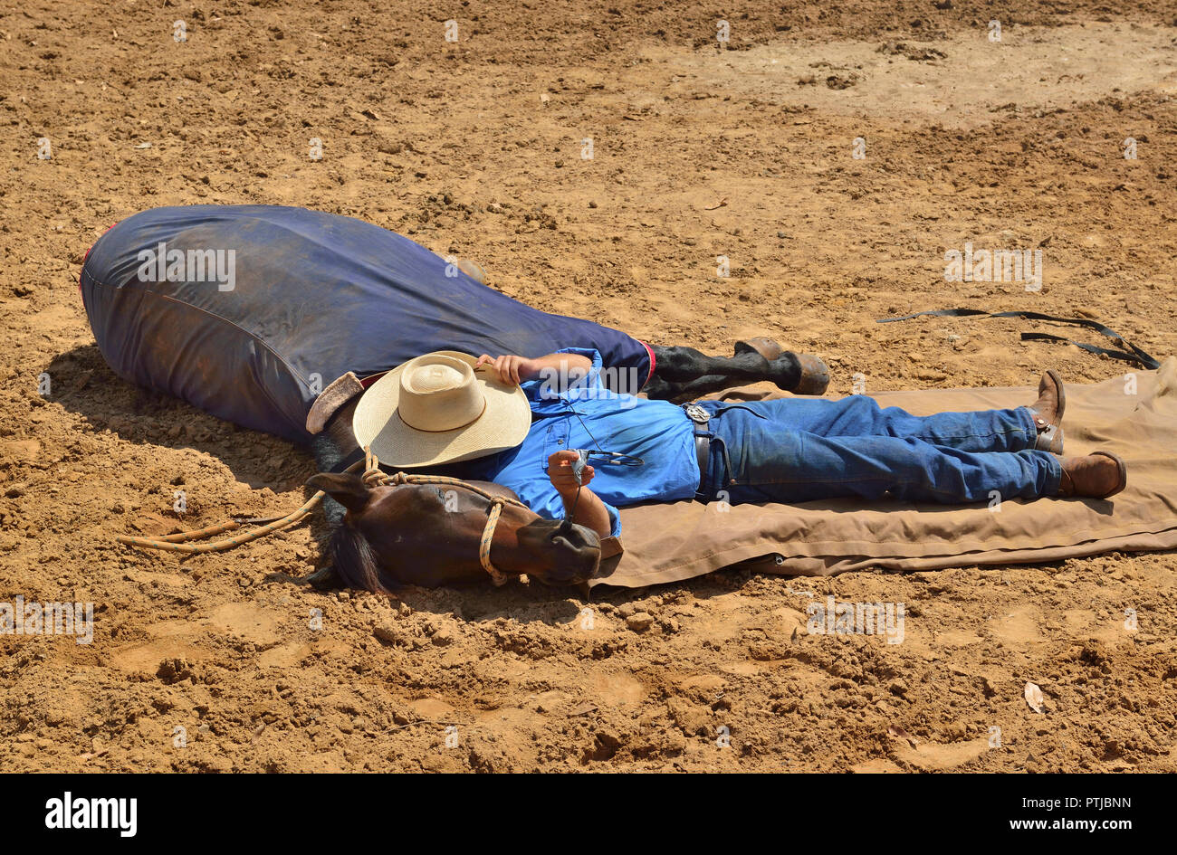 Tom Curtain the singing cowboy 's assistant stockman ,with trained horse  performing in his Outback Experience show in Katherine, Northern Territory, Stock Photo