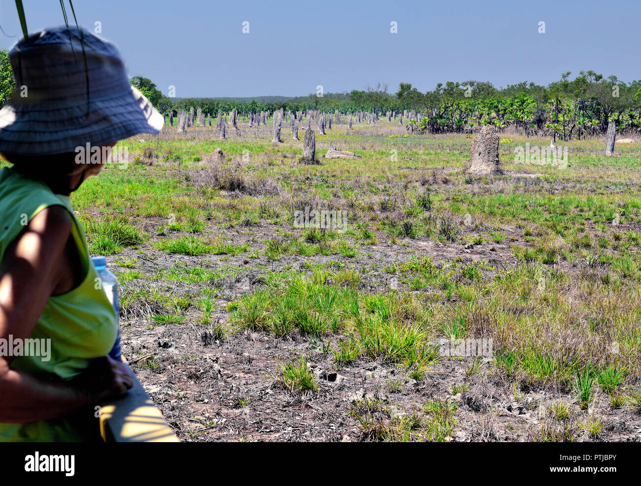 Woman Tourist on the visitors area looking at the Magnetic Termite Mounds, Lichfield National Park, Northern Territory, Australia - Stock Image