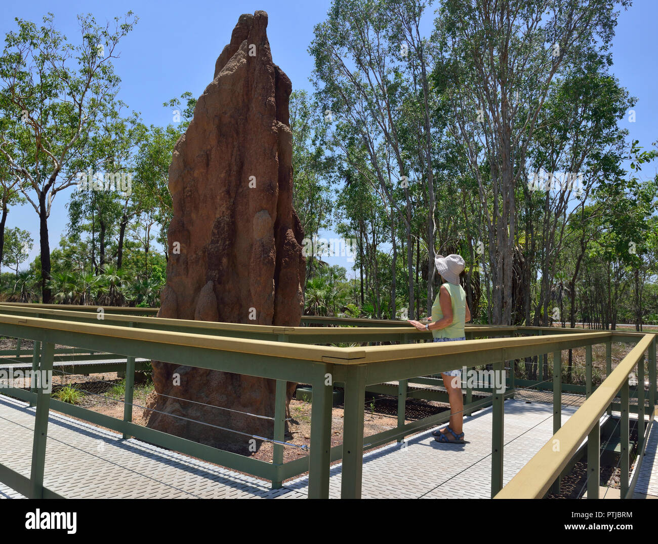 Tourist looks at Giant mound made by cathedral termites in the Litchfield National Park, Northern Territory, Australia Stock Photo