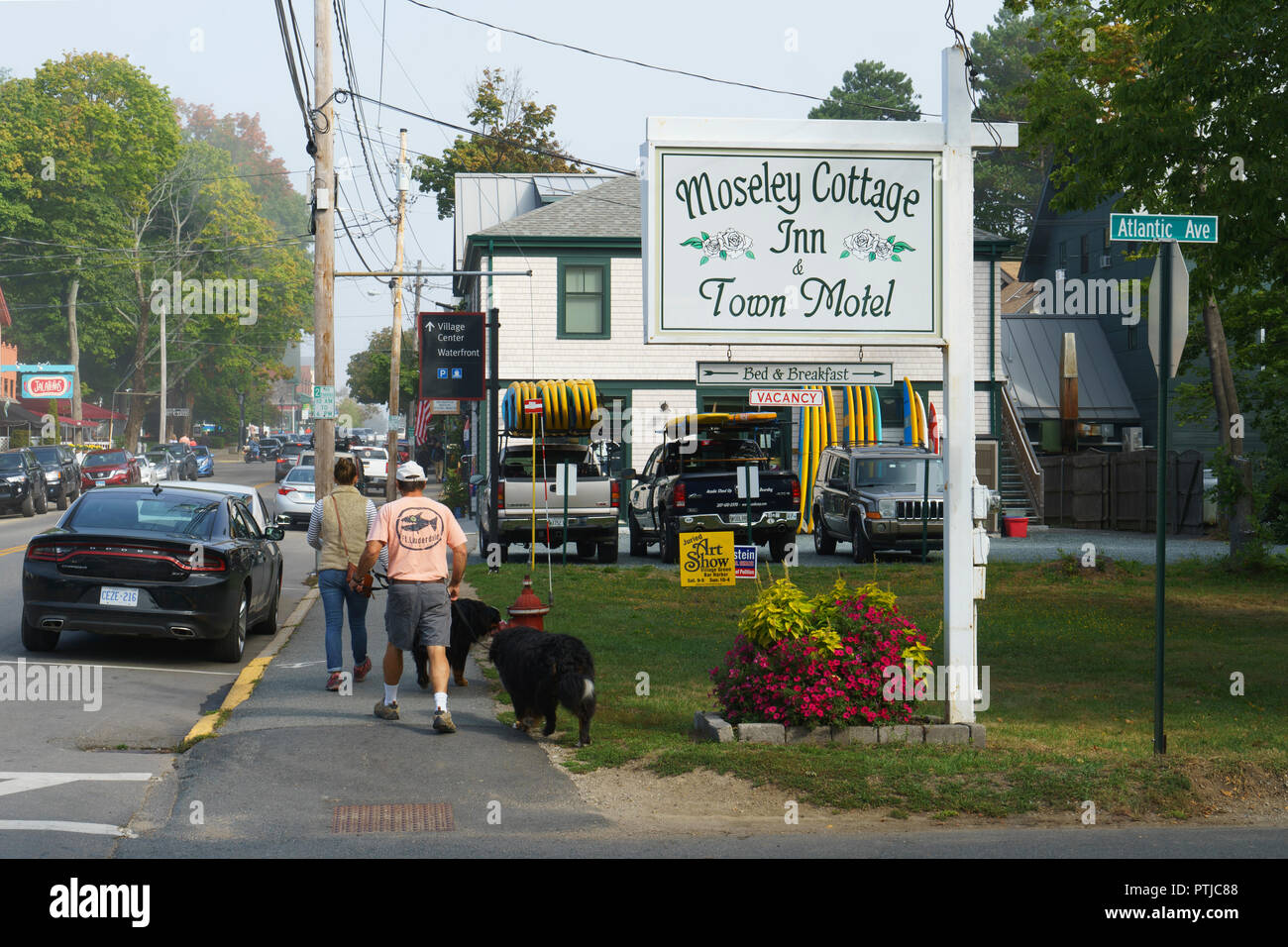 Pedestrians walking their dogs on Main Street, Bar Harbor, Maine, USA. Stock Photo