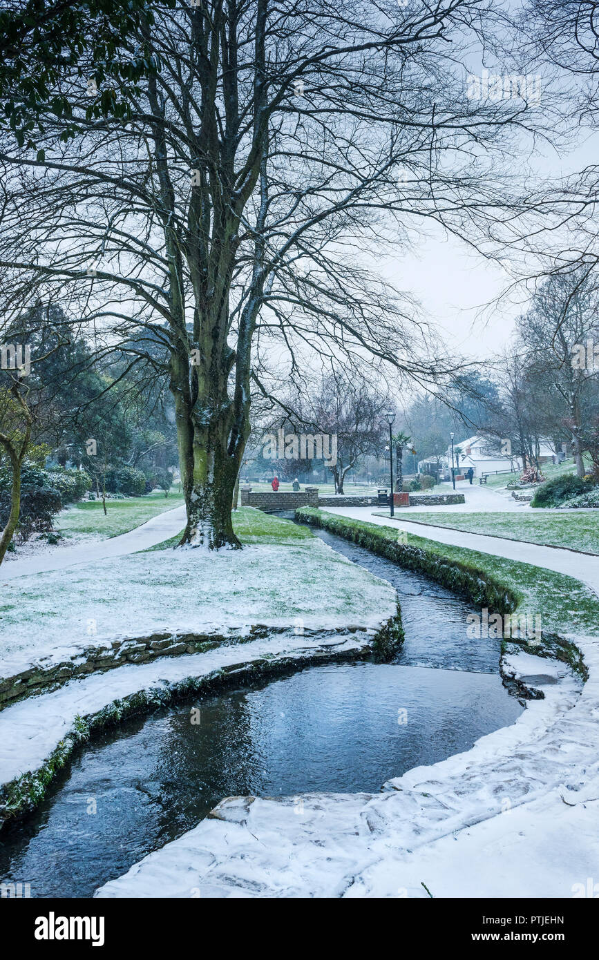 A winter scene in Trenance Gardens in Newquay in Cornwall. - Stock Image