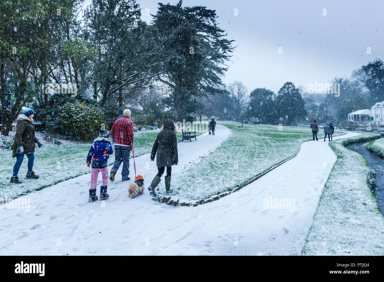 A family walking their dog through falling snow in Trenance Gardens in Newquay in Cornwall. - Stock Image
