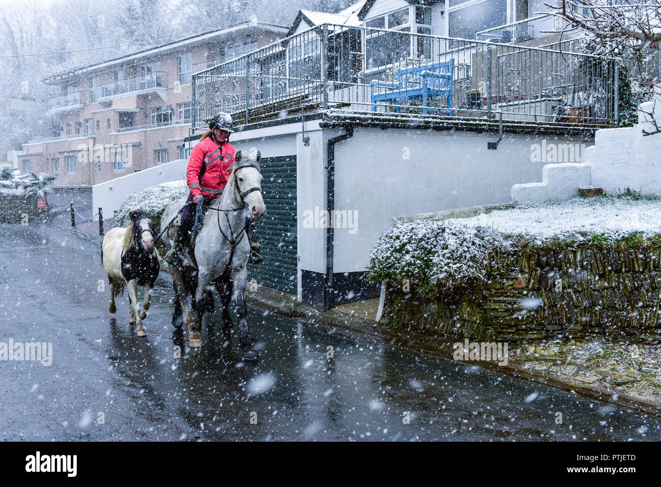 A horse rider riding her horse through heavy snowfall at Newquay in Cornwall. - Stock Image