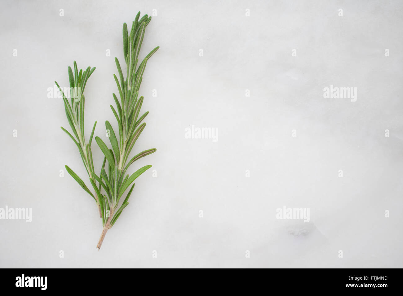 Rosemary Sprigs on a Marble Background - Stock Image