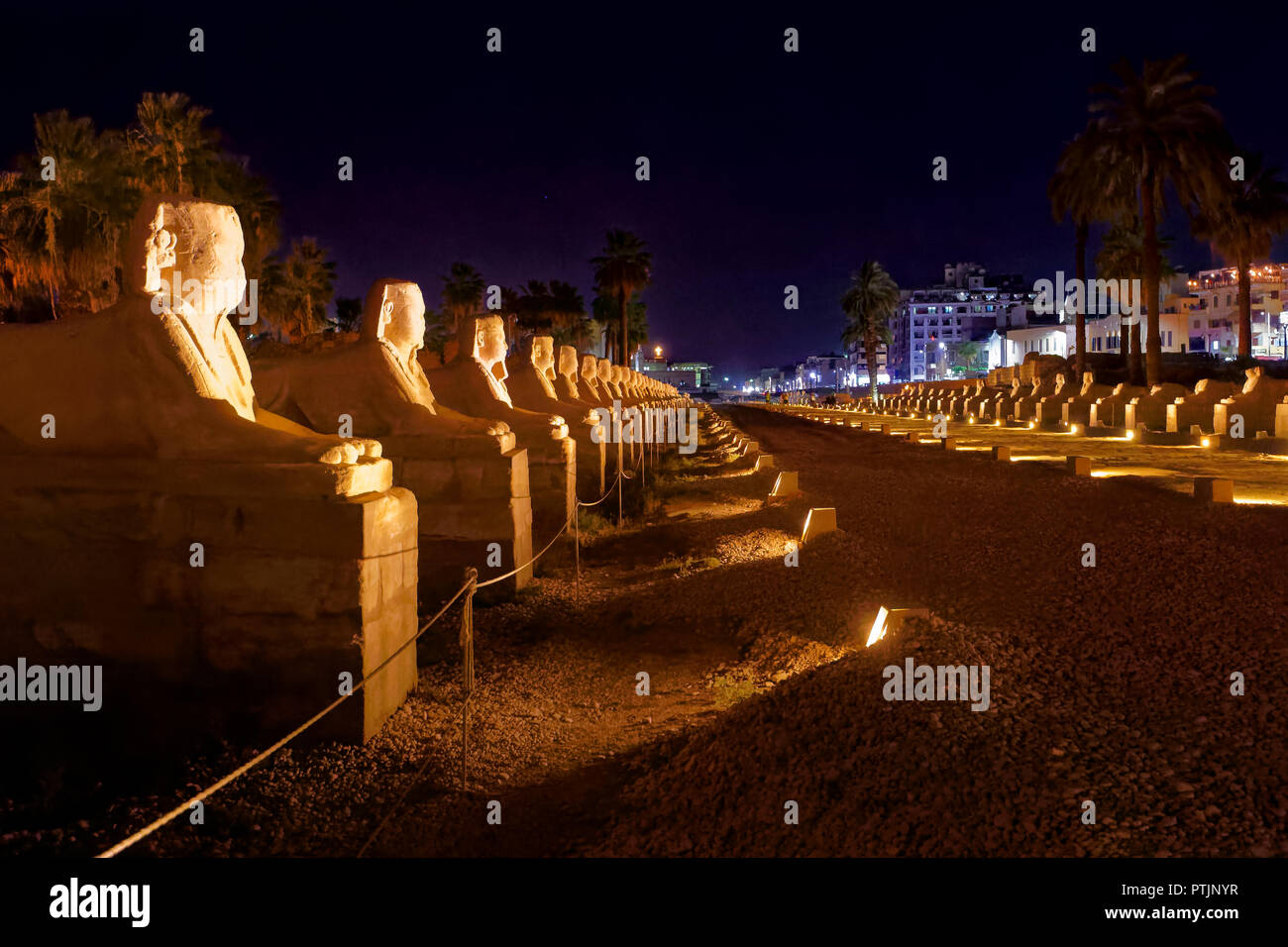Avenue of human headed  Sphinxes linking Karnak Temple and Luxor Temple in Luxor - Stock Image