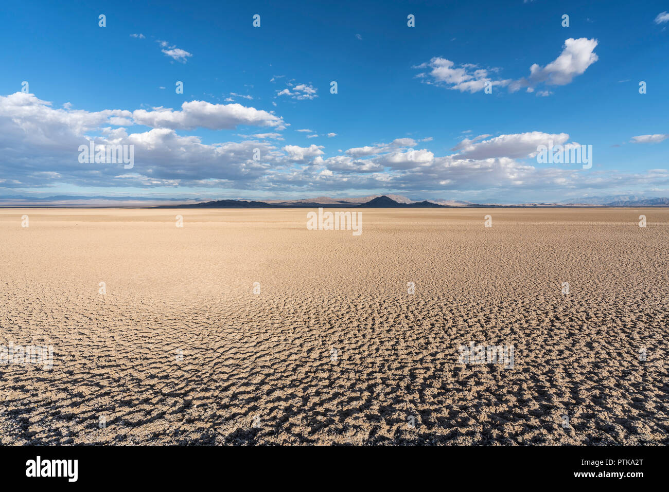 Late afternoon light at Soda dry lake in the Mojave desert near Baker, California. Stock Photo