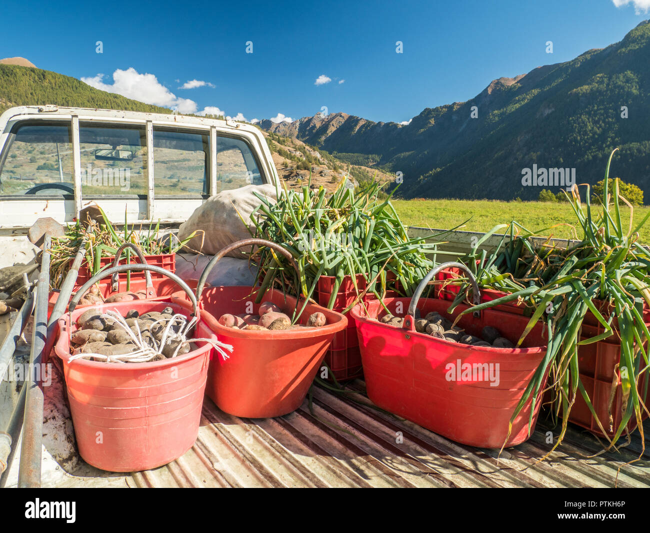 Truck loaded with harvest of organic potatoes & onions in the Village of Lignan, Aosta Valley, NW Italy Stock Photo