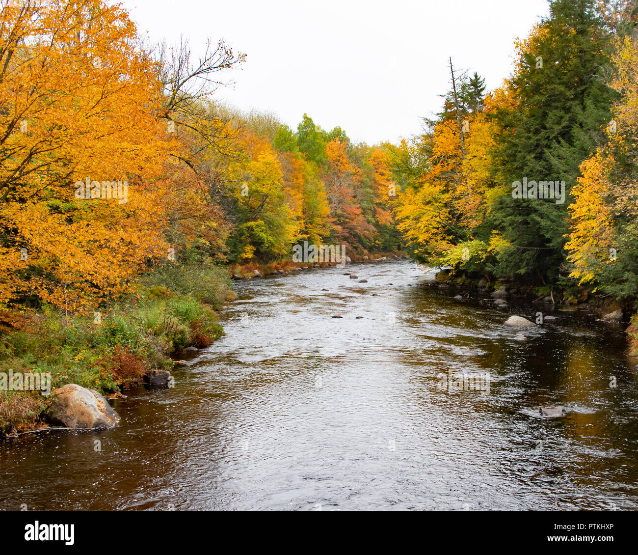 A colorful view of the Sacandaga River near Wells, NY USA with bright fall foliage. - Stock Image