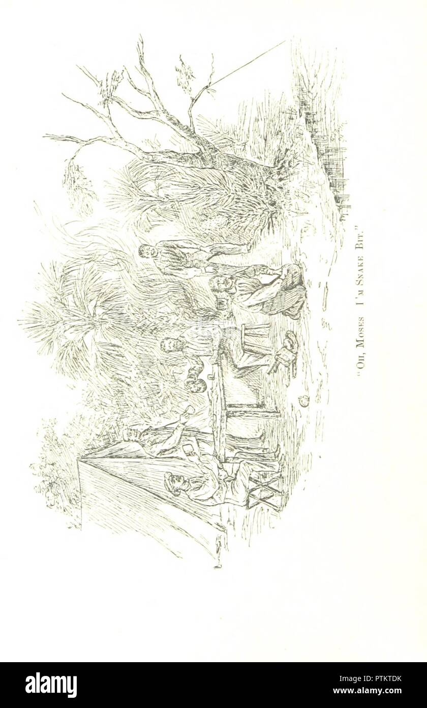 page 56 of 'Camping and cruising in Florida . Illustrated' . - Stock Image