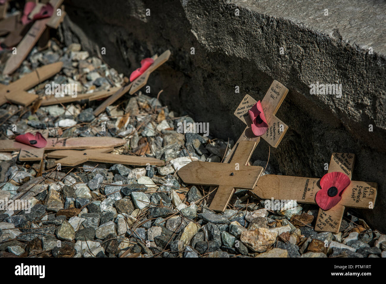 Crosses laid down in remembrance at the British Cemetery in Kabul in Afghanistan. - Stock Image
