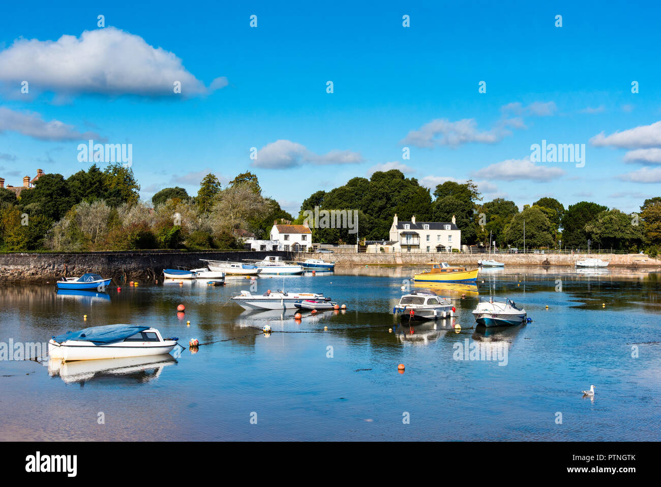 The harbour at Cockwood, on the River Exe Estuaty, near Starcross, Devon, UK - Stock Image
