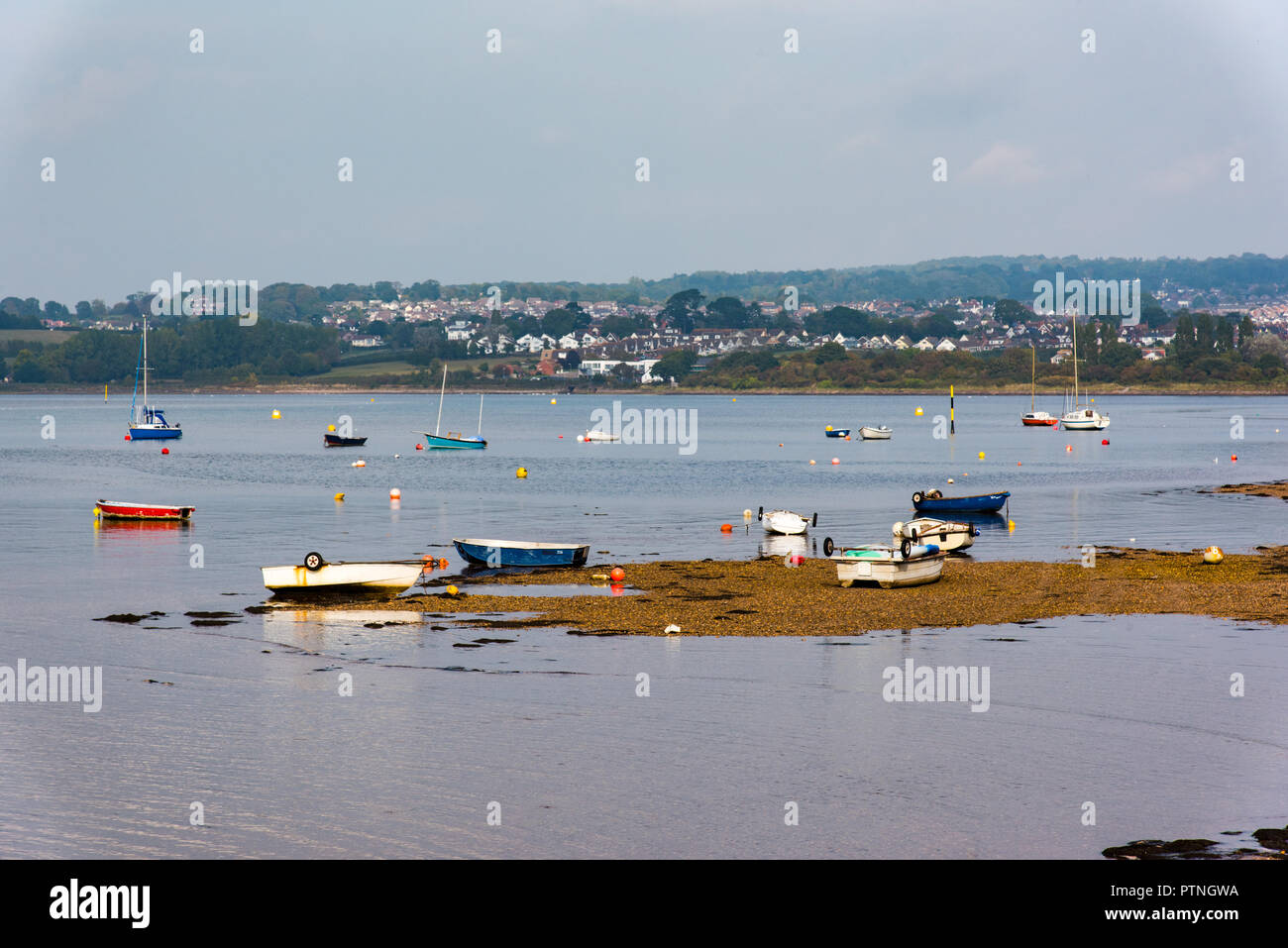 Shelly Beach and the River Exe Estuary, Exmouth, Devon, UK. - Stock Image