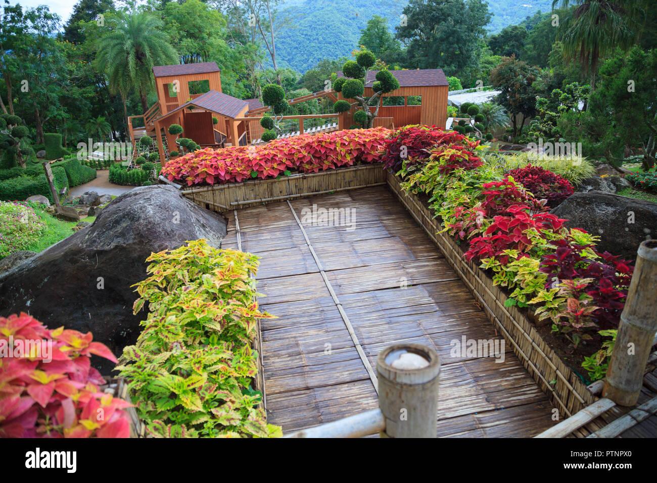 Tropical Rural House Home Garden Bamboo Wooden Balcony Terrace