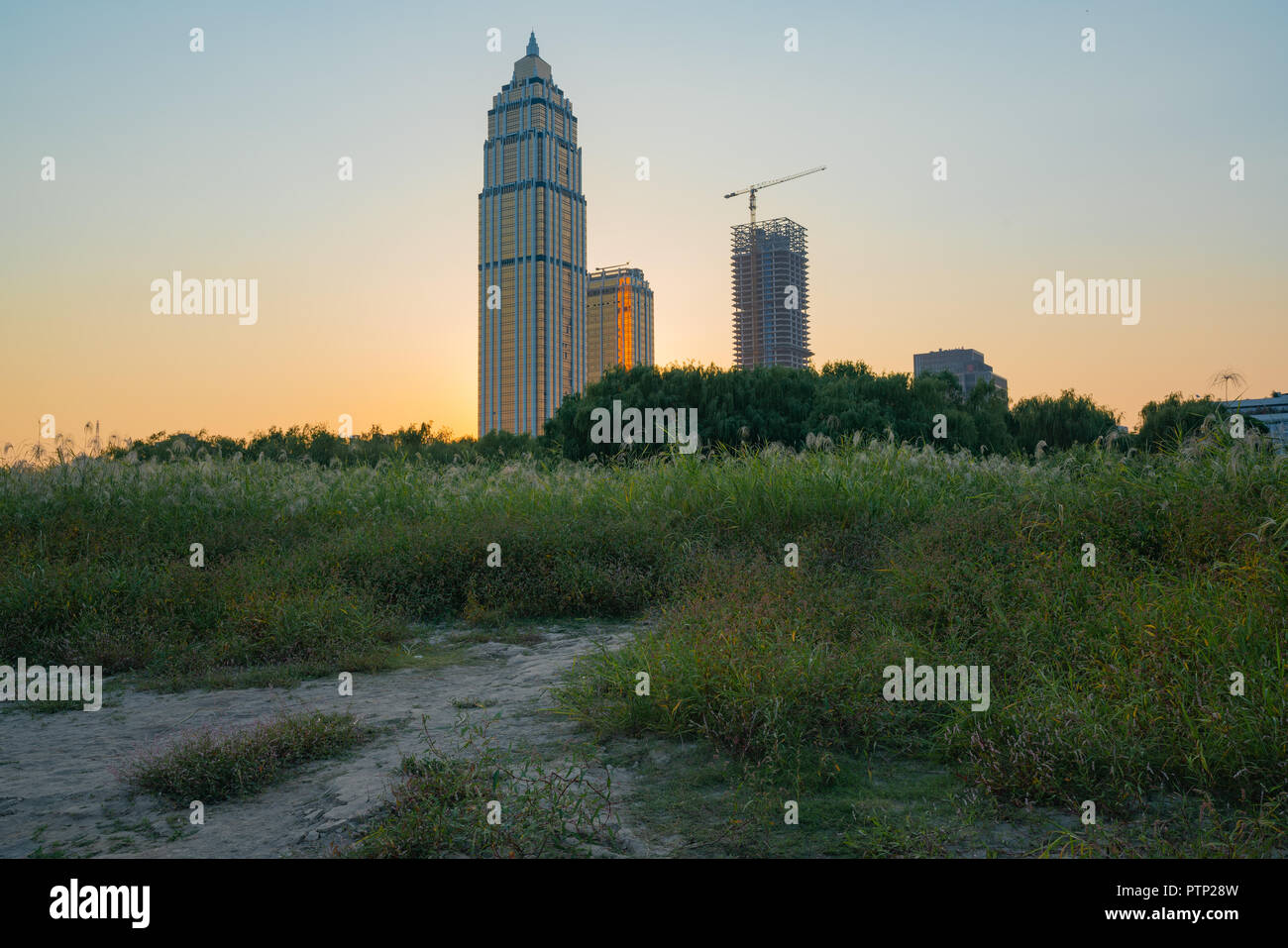 City buildings emerge from nature , Hankou district skyline in Wuhan Hubei China - Stock Image