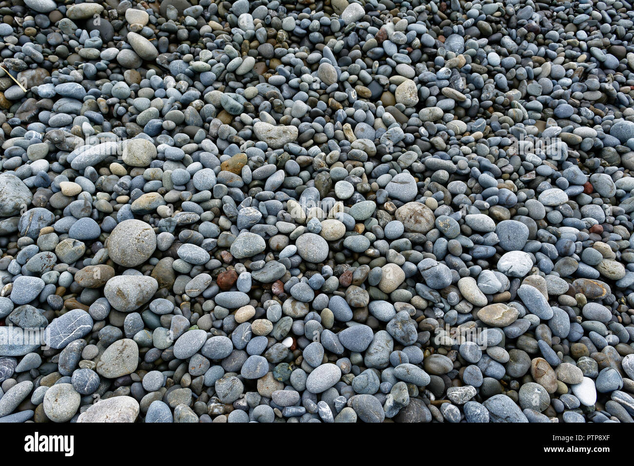 Pebbles of different colours and sizes on a stoney beach - Stock Image