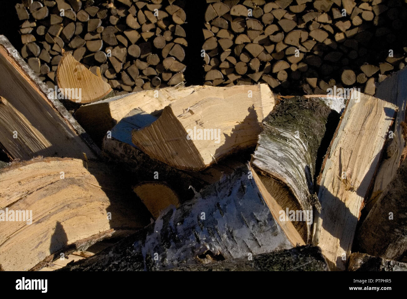 Pile and wall of cut birch wood and stacked wood logs ready for winter, standing on the grass Stock Photo
