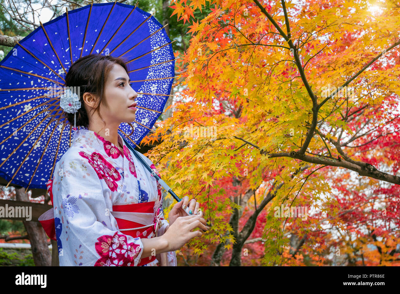 d3765f94e0907 Asian woman wearing japanese traditional kimono with umbrella in autumn  park. Japan