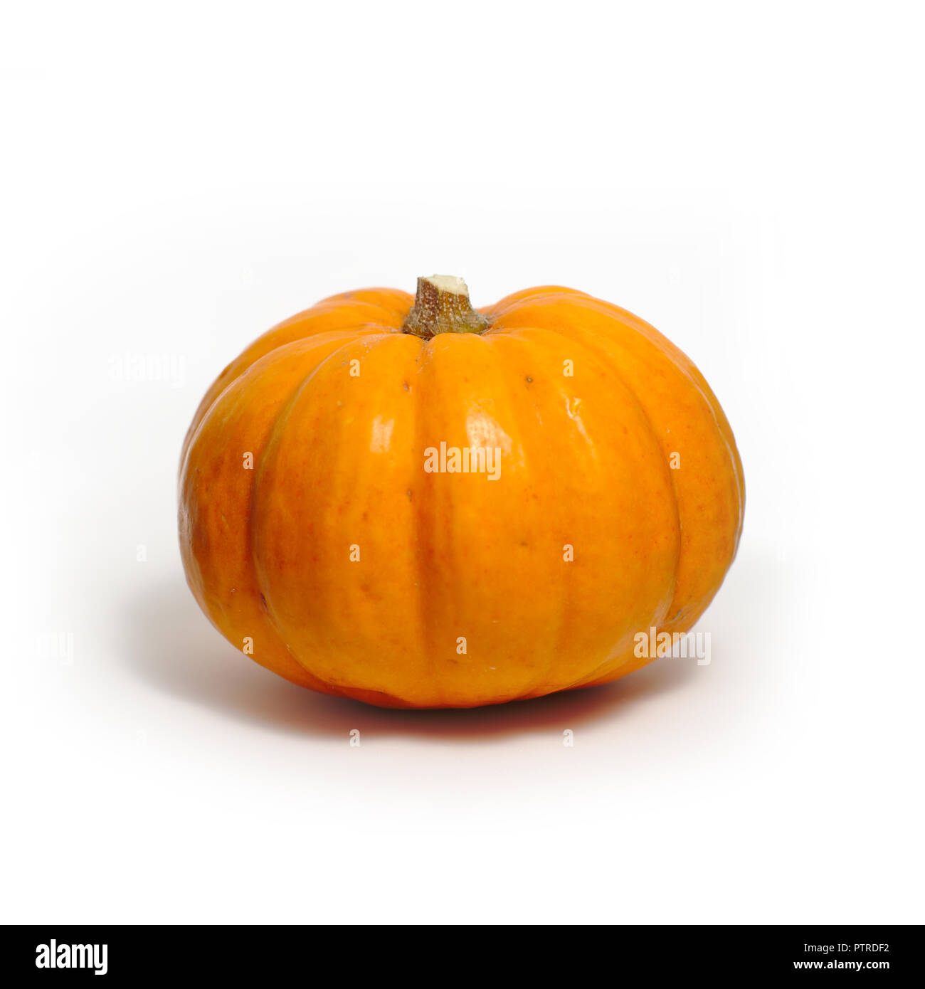 Pumpkin on a white background Stock Photo