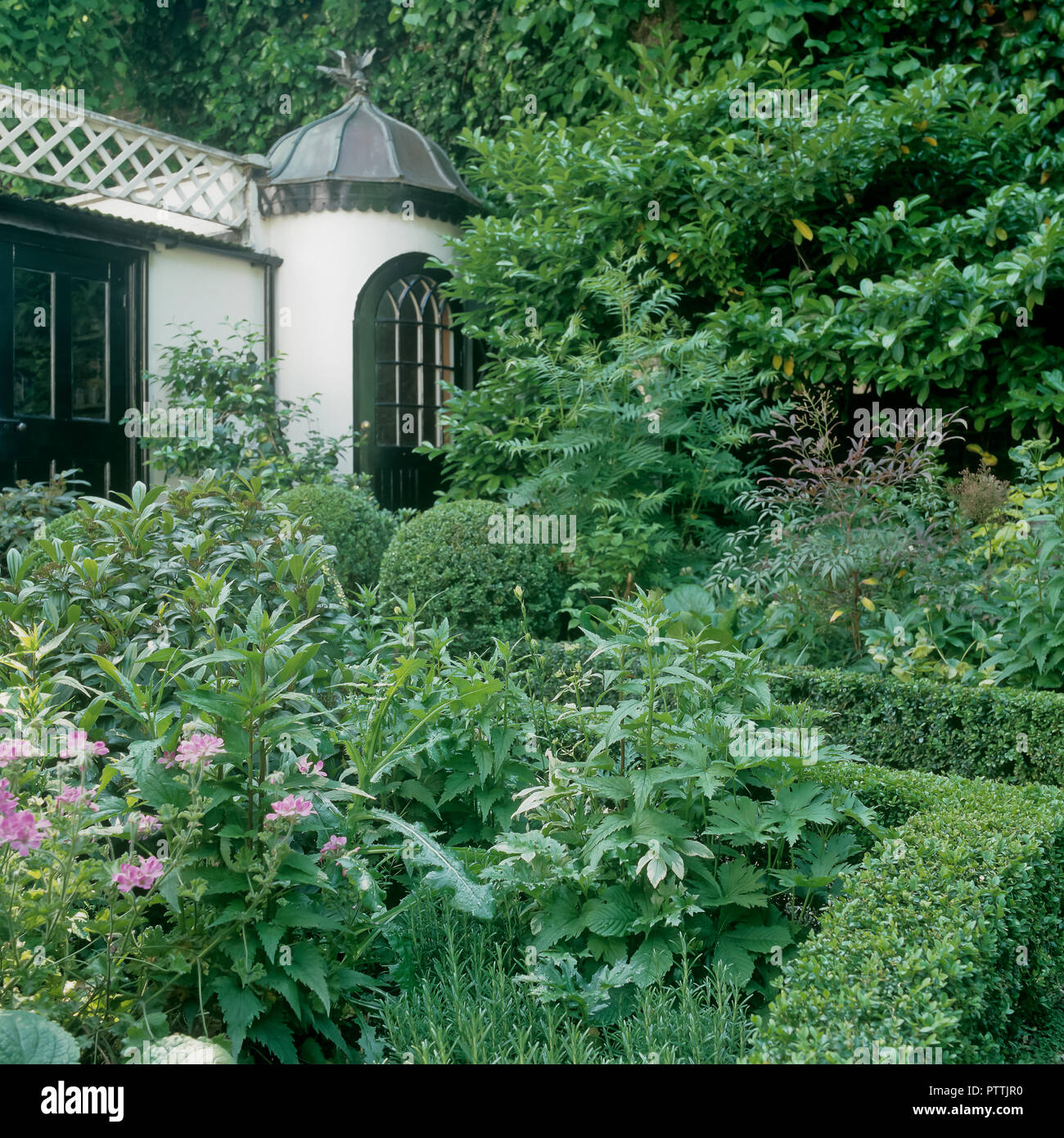 Pink flowering plants and clipped box with Victorian summerhouse in Kensington Garden - Stock Image