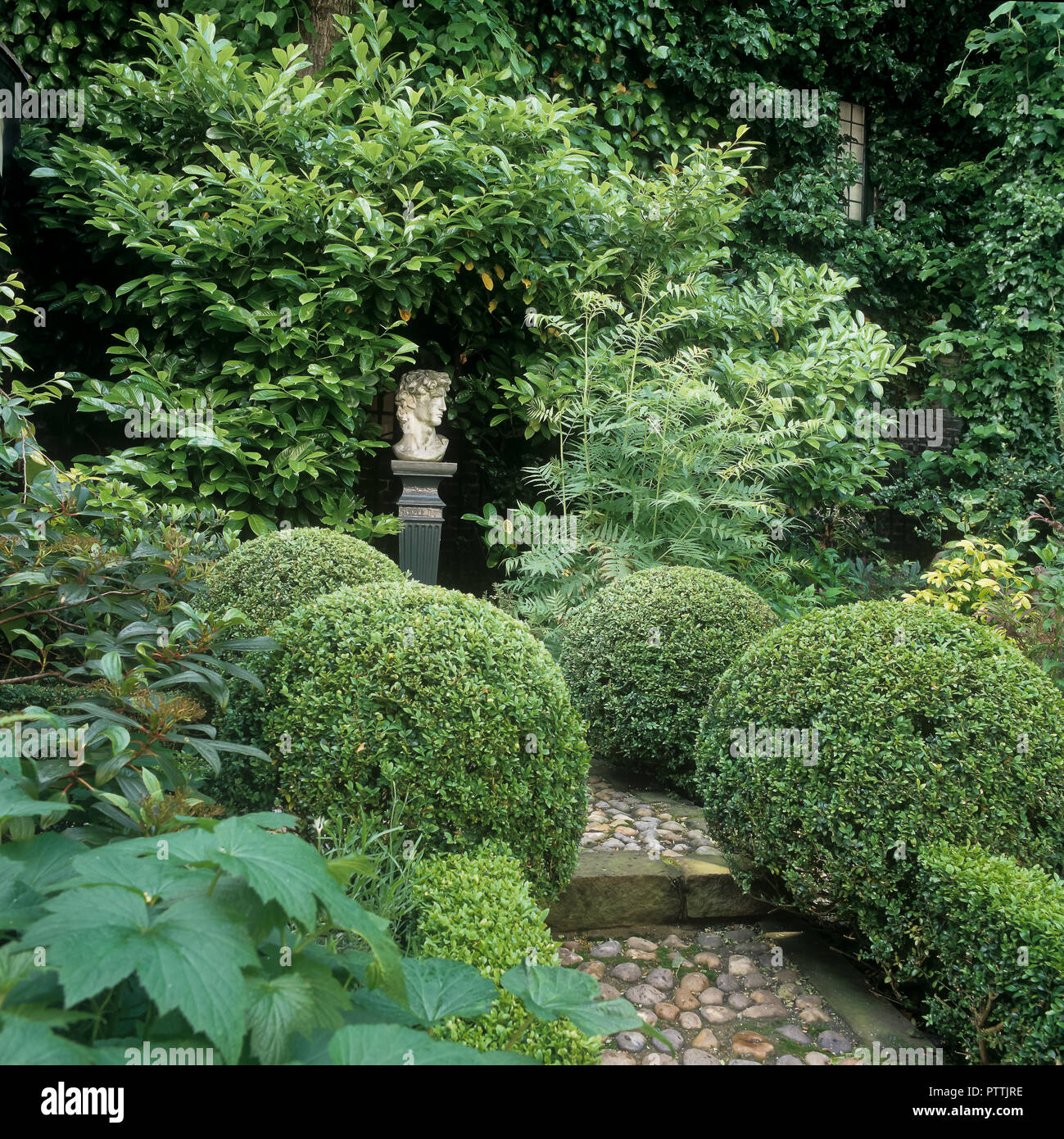 Clipped box balls and pebbled path with statue‌ in Kensington Garden - Stock Image