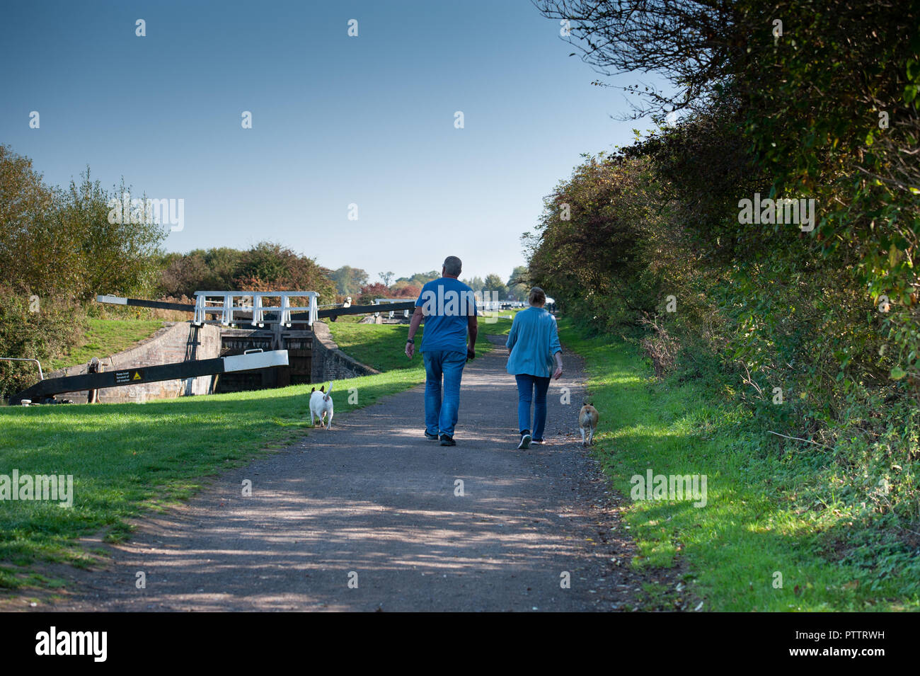 Walkers and their dogs on the towpath at the Caen Hill Flight on the Kennet and Avon Canal, Devizes, Wiltshire, UK. Stock Photo