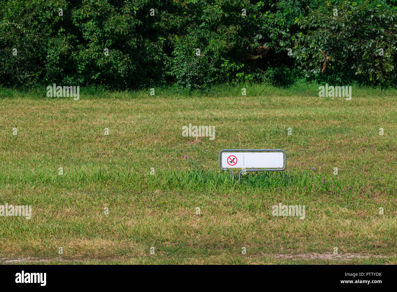 No dogs allowed sign on a meadow Stock Photo