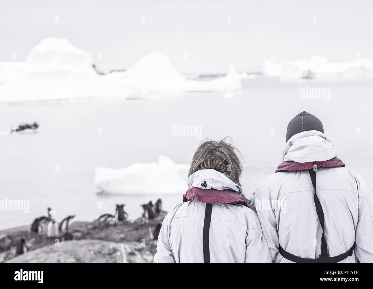 Touristen in der Antarktis (model-released) - Stock Image