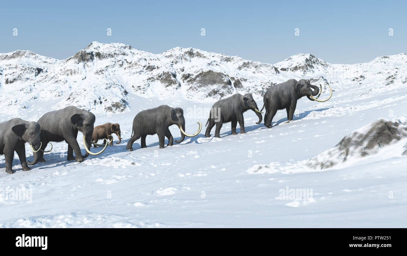 Mammoth group 3d render - Stock Image
