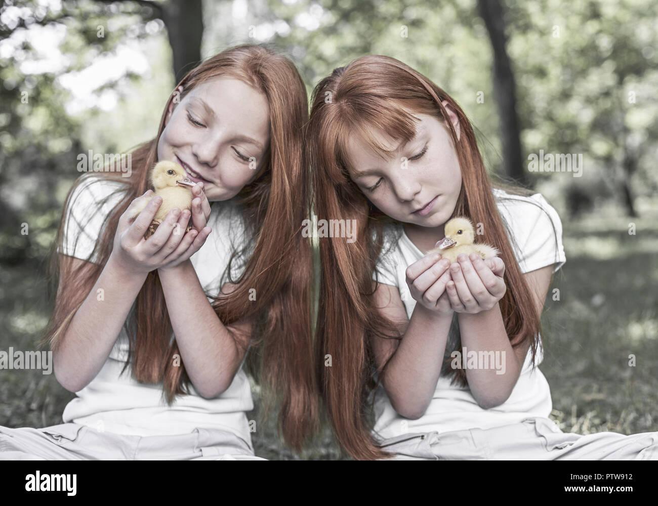 Rothaarige Zwillingsmaedchen mit zwei Entenkueken (model-released) - Stock Image