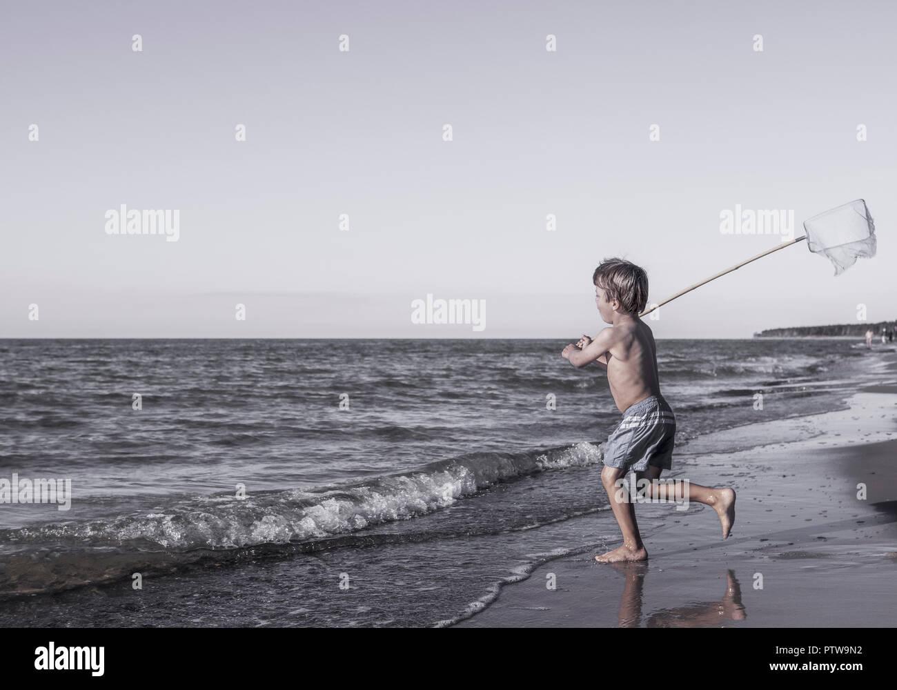 Junge mit kleinem Kescher am Strand (model-released) - Stock Image