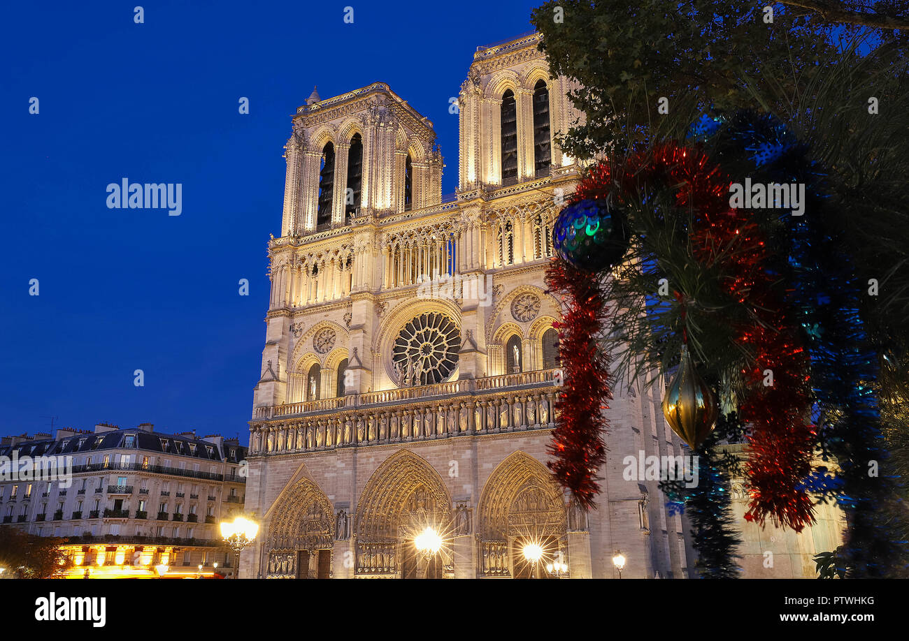 The Notre Dame Cathedral and branch with Christmas decoration in the ...