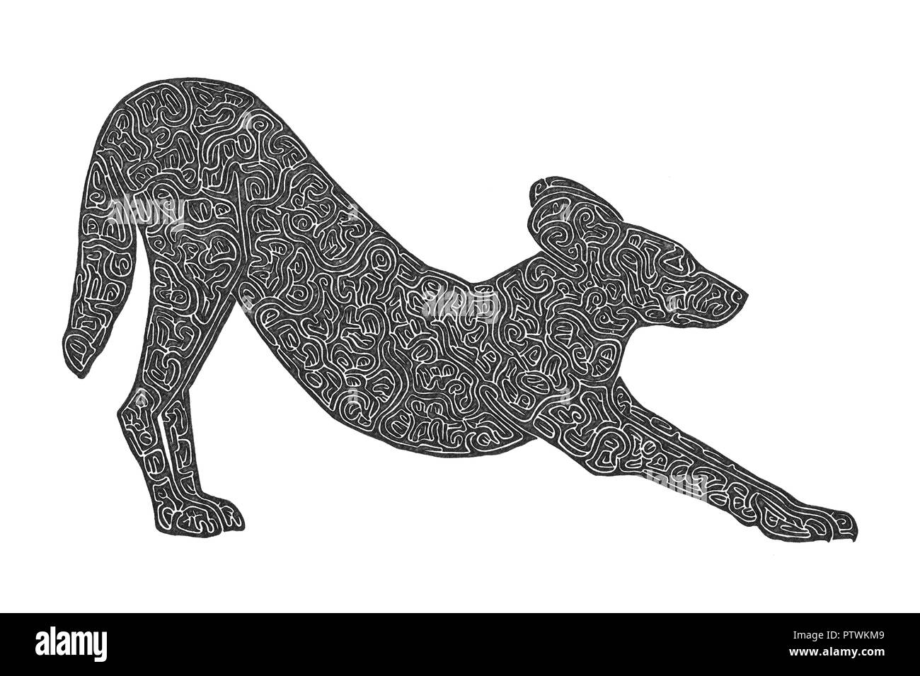 Illustration drawing of an african wild dog stretching its legs after sleep black and white maze lines