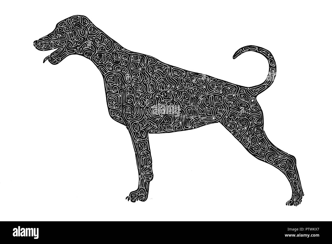 Illustration / drawing of a Dobermann / Doberman dog standing upright, black-and-white, maze lines - Stock Image