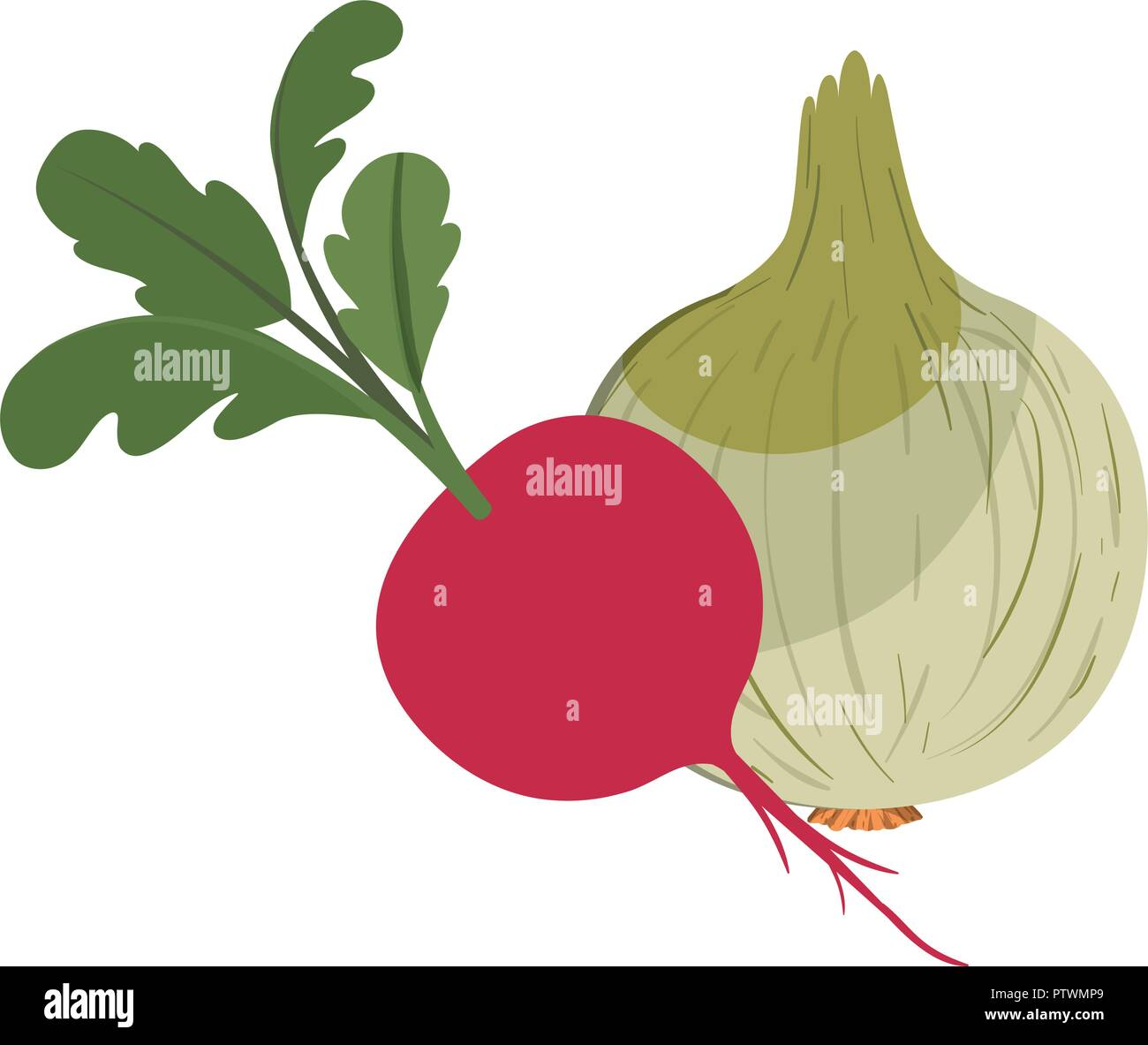 beautiful fresh beet and egg onion isolated icon - Stock Vector