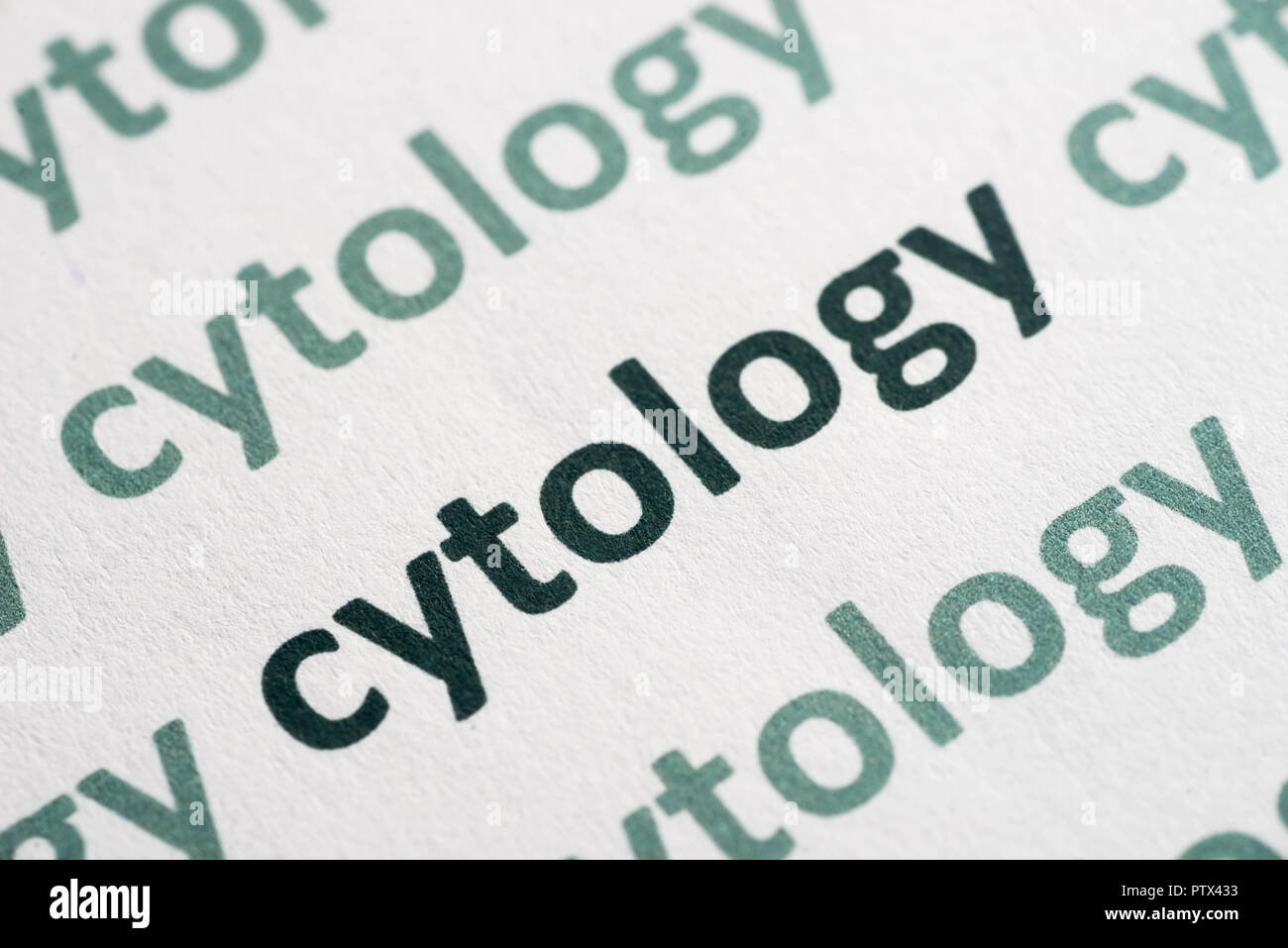 word cytology printed on white paper macro Stock Photo