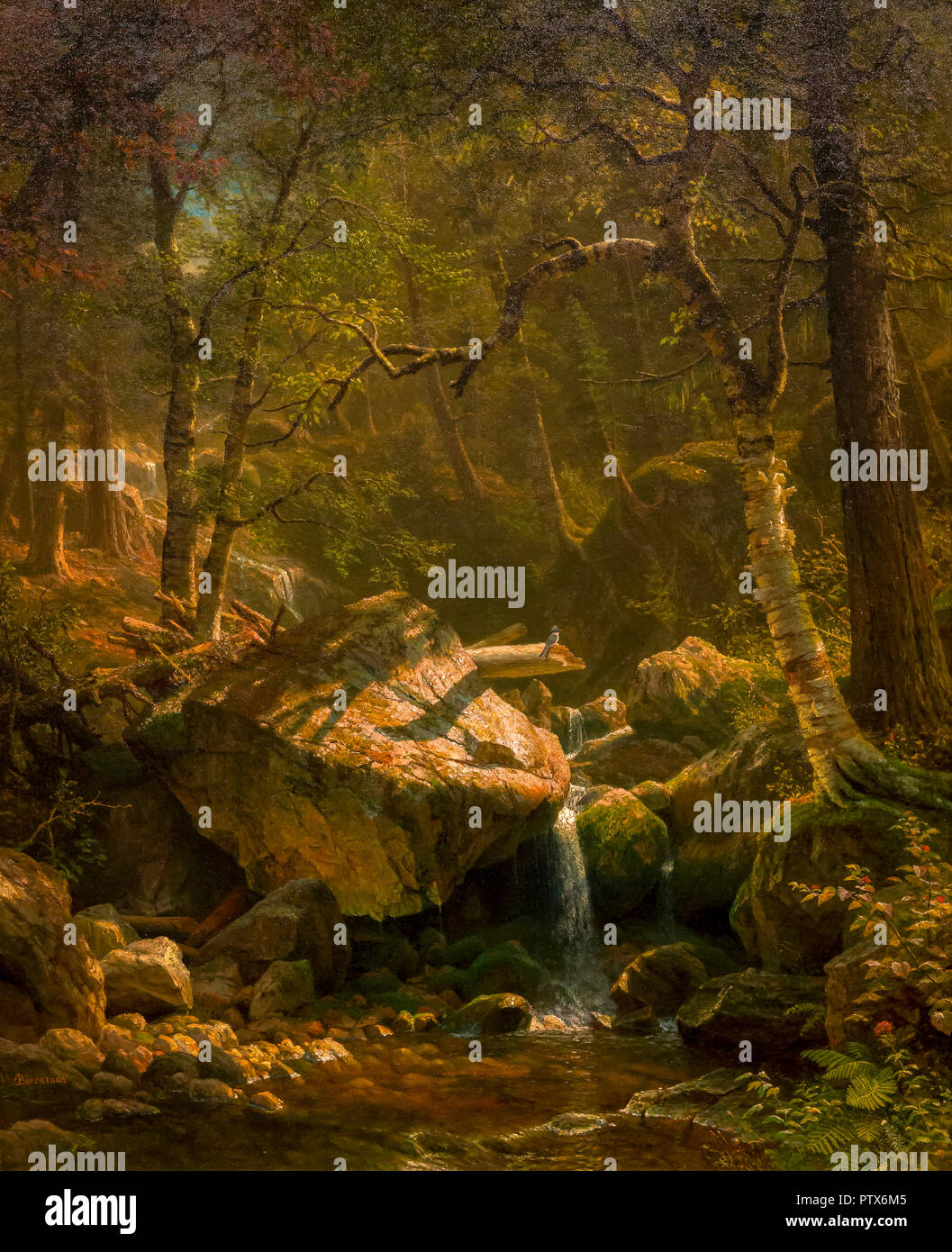 Mountain Brook, Albert Bierstadt, 1863, Art Institute of Chicago, Chicago, Illinois, USA, North America - Stock Image