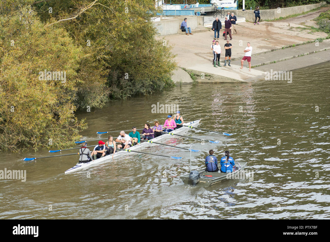A mixed coxed eight on the River Thames, Barnes, London, SW13, UK - Stock Image