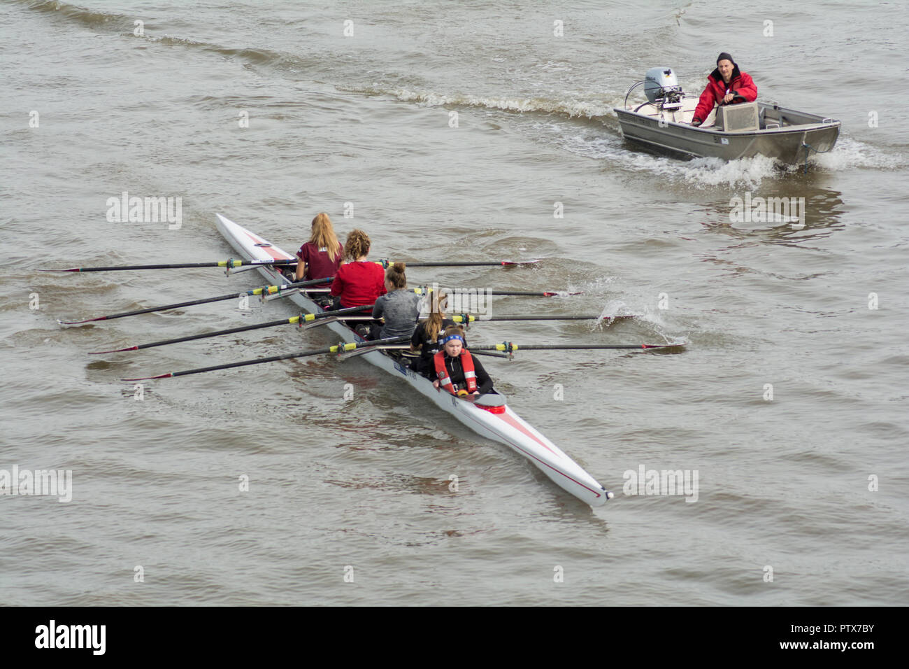 A woman's coxed eight on the River Thames, Barnes, London, SW13, UK - Stock Image