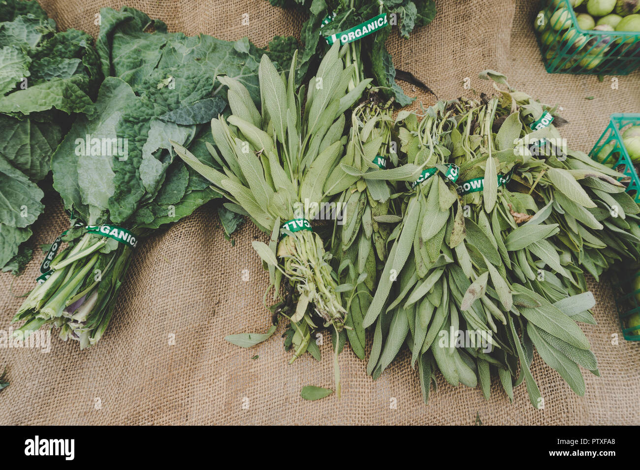Southern California Farmer's Market display of sage and
