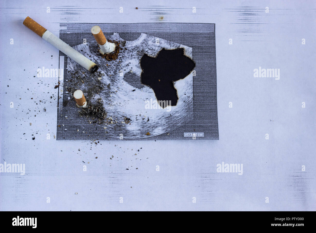 Cigarette cigarette stubs extinguished about a shot of pregnancy, pregnancy and smoking, cigarette and gestation - Stock Image
