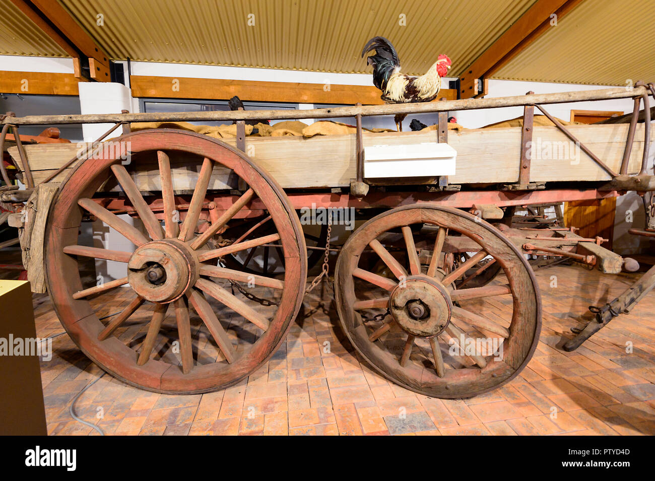 Horse Waggon on display at the Cobb & Co Museum, Toowoomba, Southern Queensland, QLD, Australia - Stock Image