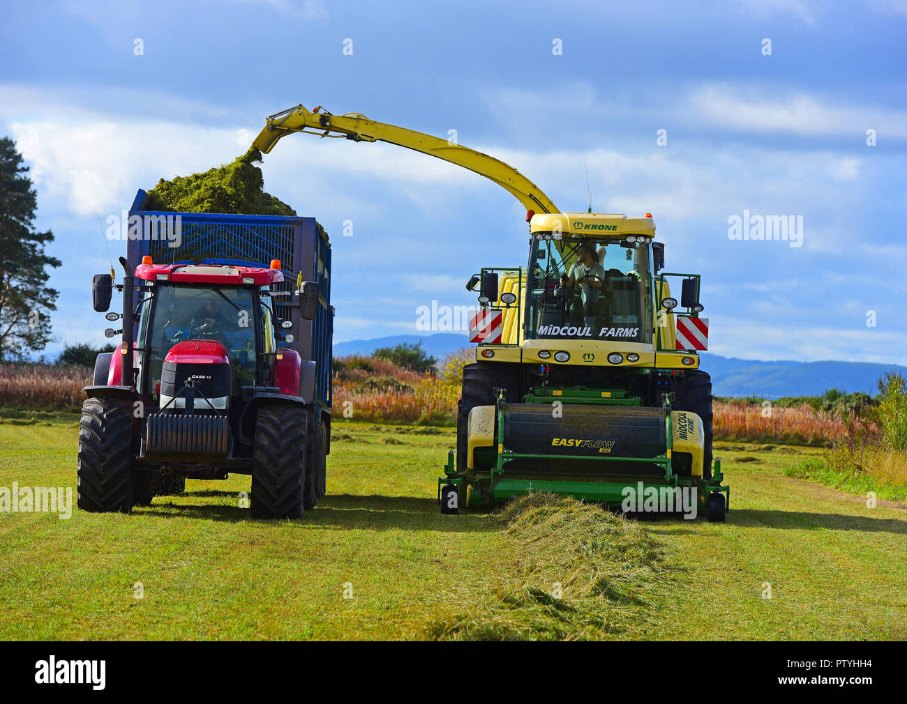 Gathering cut hay ready for the silage pit and will be used as Winter feed for the cattle herd near Inverness, in the Scottish Highlands UK. Stock Photo