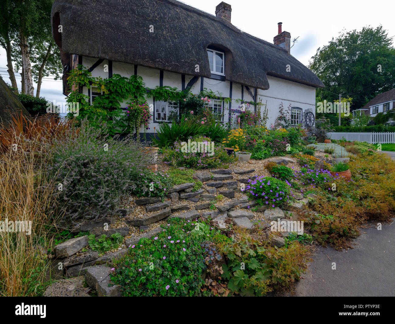 Typical Hampshire country cottage - half timbered and thatched - with pretty front garden in the village of Easton near Winchester in the South Downs  - Stock Image
